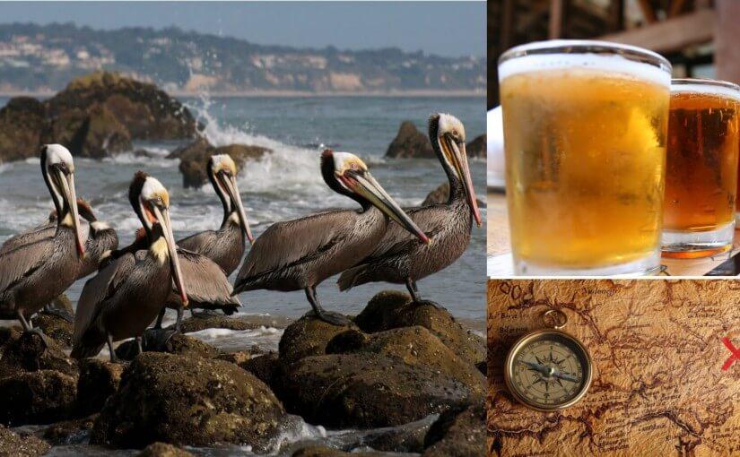Birds, Beer & Treasure: 3 Unusual Oregon Coast Spring Activities