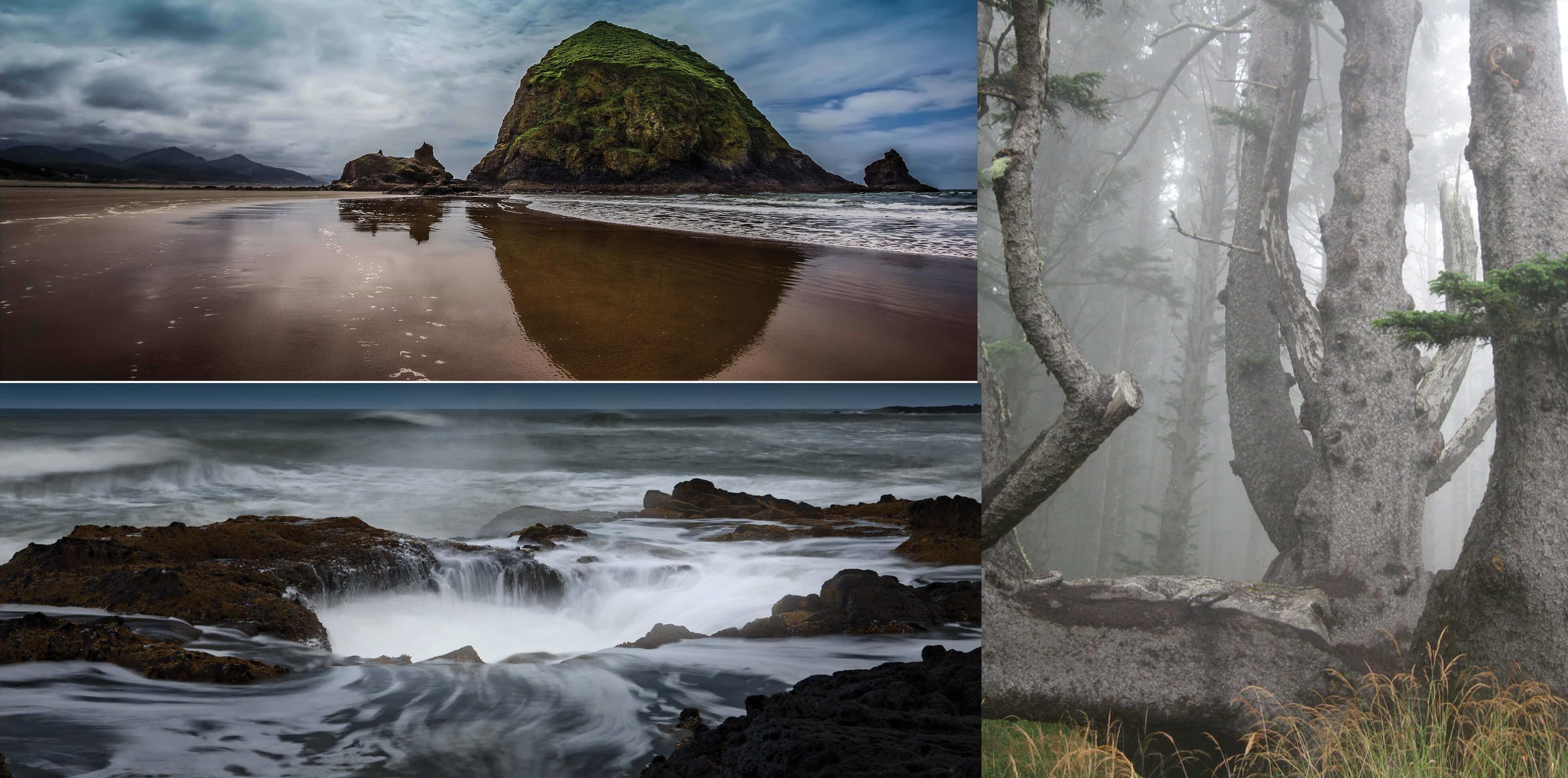 Places to see Oregon Coast