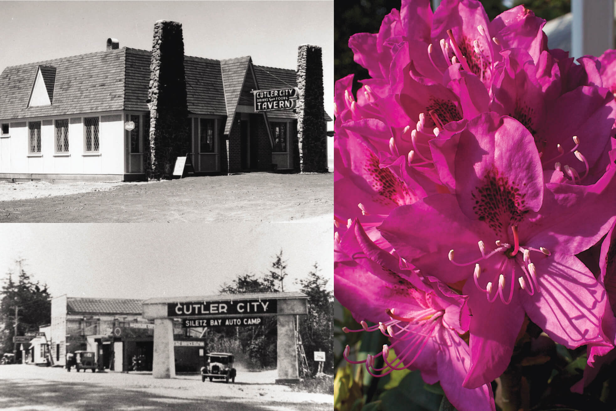 Lincoln City Cutler City Oregon